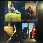 """Been Caught Stealing Limited Edition 12"""" Vinyl Insert 3"""