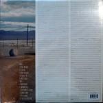 Strays Vinyl Back