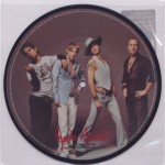 "True Nature 7"" Picture Vinyl Back"