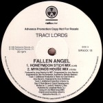 Fallen Angel Vinyl Promo Side 1